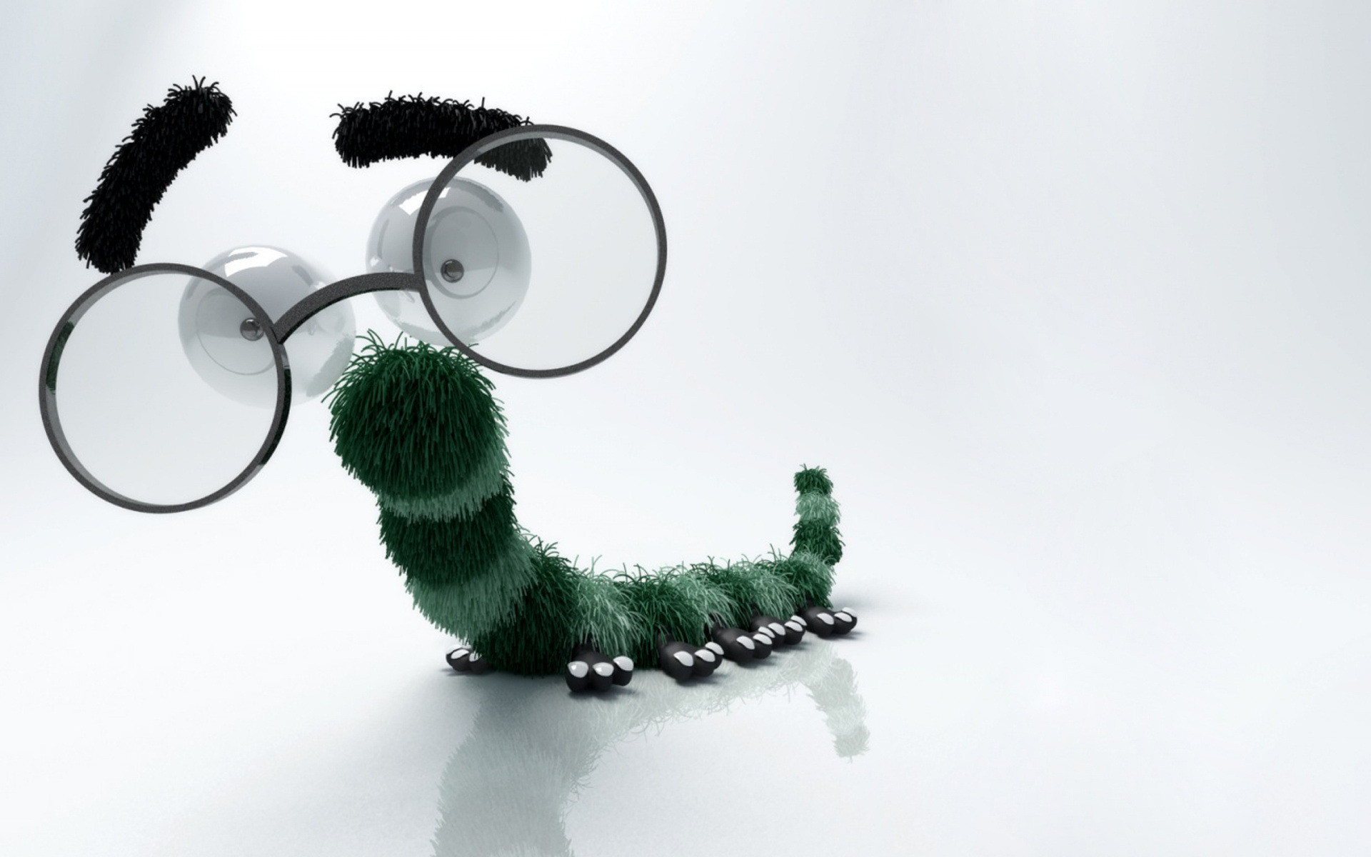 Who knew caterpillars had Specsavers?