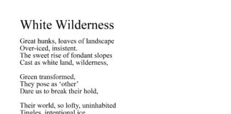 'White Wilderness' an atmospheric snow poem inspired by The Brecon Beacons, from the K. S. Moore Poetry Collection: 'Landscapes and Hearts'.