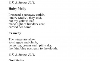 A selection of nature inspired micropoetry, by K. S. Moore.
