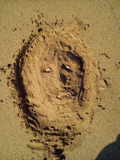 Face crafted from sand.