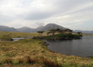 Island of trees against background of mountains in Connemara.