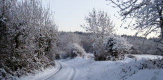 Snowy path.