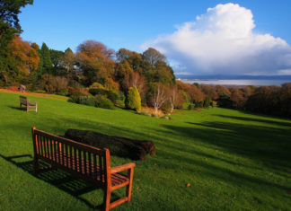 Sea View from Clyne Gardens