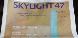 Issue 13 of Skylight 47 July 2020